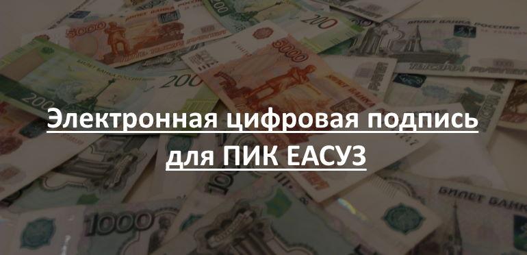 Электронная цифровая подпись для ПИК ЕАСУЗ